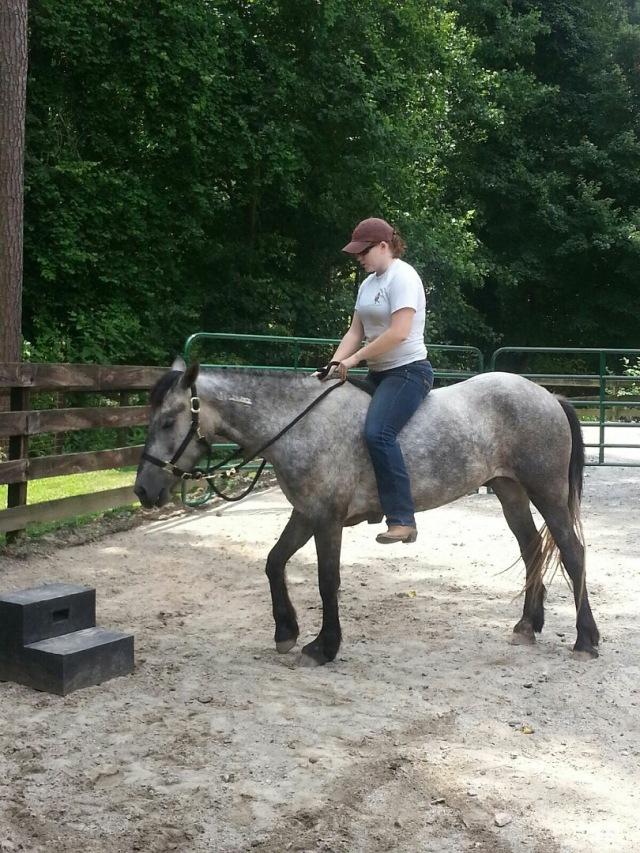 Proof Of Pony Riding!