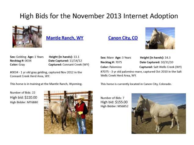 Top bids 11.21